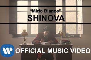 SHINOVA – MIRLO BLANCO